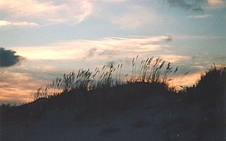 Sundown over dune